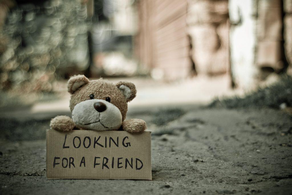 Ein Contentbär mit Schild auf dem: Looking for a Friend steht